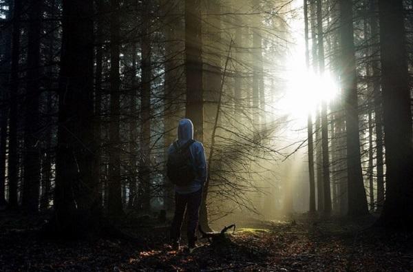 Kỹ năng sinh tồn trong rừng bạn nên biết