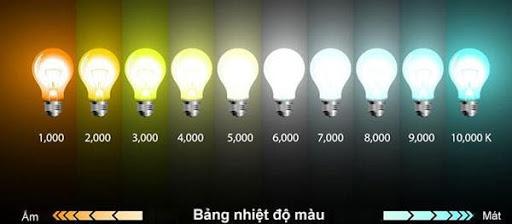 đèn pin đi rừng